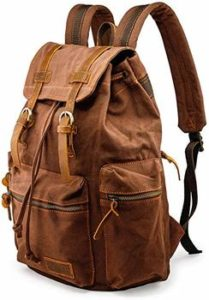 2 GEARONIC TM Men 21L Canvas Backpack
