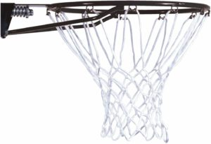 #1 Lifetime Basketball Rim