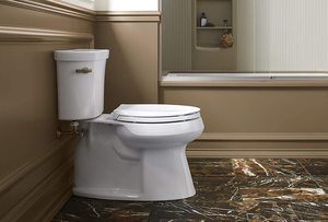 #10 KOHLER K-4636-0 Cachet Elongated White Toilet Seat