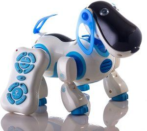 9. Durherm Smart Storytelling Robot Dog