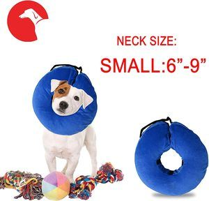 10. Laboratory Inflatable Dog Collar
