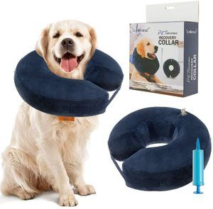 7. SCENEREAL Inflatable Recovery Collar for Dogs & Cats