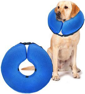 8. UMARDOO Inflatable Recovery Cone Collar