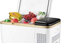 Top 10 Best Portable Freezers in 2021 Reviews