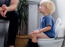 Top 10 Best Toddler Toilet Seats in 2021 Reviews