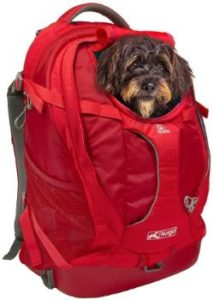 #10. Kurgo Dog Carrier Backpack