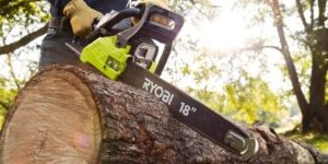 Top 10 Best Ryobi Chainsaws Of 2020 Reviews