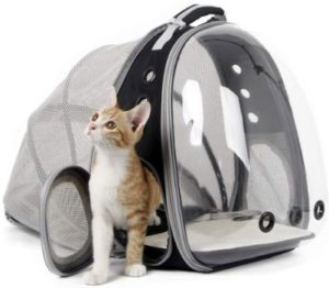 #9. Halinfer Expandable cat backpack